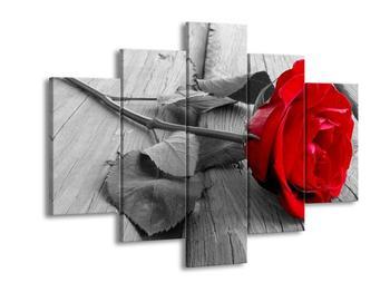 Obraz růže (F000484F150105)