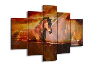 Obraz koně (F000528F150105)