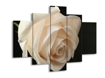 Obraz bílé růže (F000533F150105)