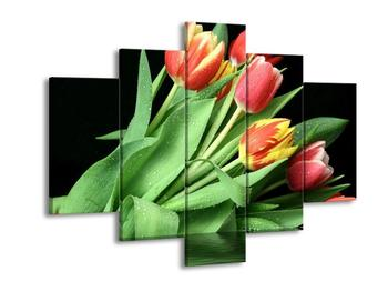 Obraz tulipánů (F000560F150105)