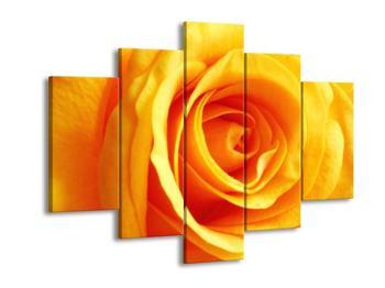 Obraz oranžové růže (F000573F150105)