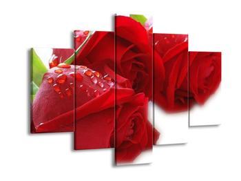 Obraz červených růží (F000668F150105)