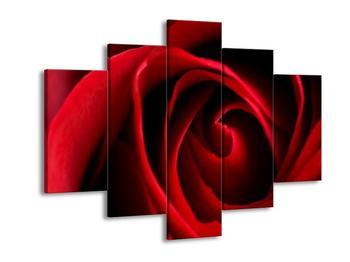 Obraz červené růže (F000671F150105)