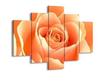 Obraz růže (F000693F150105)
