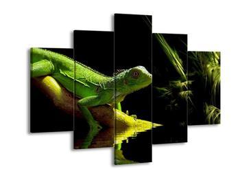 Obraz ještěra (F000846F150105)