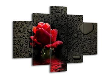 Obraz červené růže (F000864F150105)