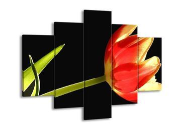 Obraz červené květiny (F000923F150105)