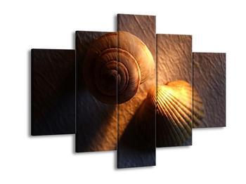 Obraz mušlí (F000944F150105)