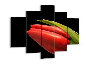 Obraz červeného kvítku (F000996F150105)