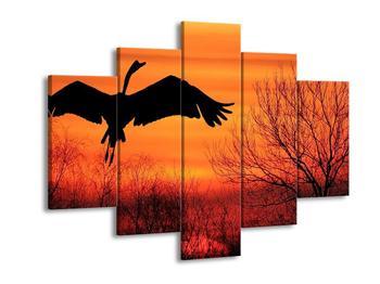 Obraz siluety labutě (F000998F150105)