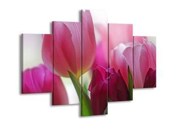Obraz růžových tulipánů (F001005F150105)