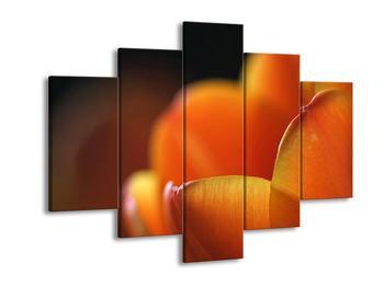 Obraz oranžového kvítku (F001008F150105)