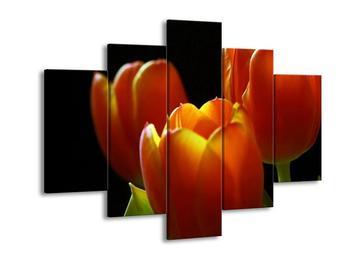 Obraz oranžových tulipánu (F001009F150105)