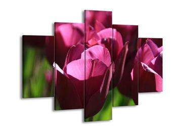 Obraz fialových tulipánů (F001021F150105)