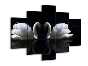 Obraz labutí lásky (F001029F150105)