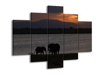Obraz siluet slonů (F001037F150105)