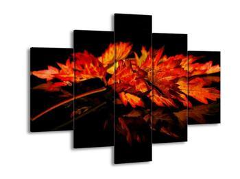 Obraz podzimních listů (F001115F150105)