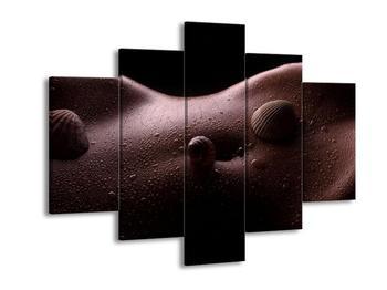 Obraz mušlí na těle (F001191F150105)