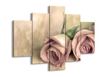 Obraz jemných růží (F001212F150105)