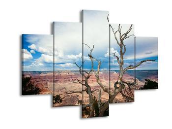 Krásný obraz přírody (F001217F150105)
