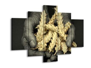 Obraz obylí v dlaních (F001286F150105)