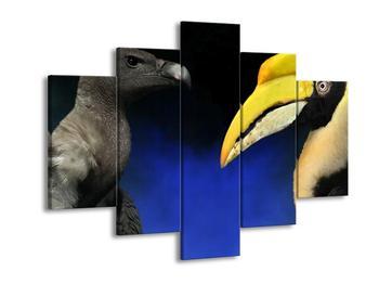 Obraz ptačích zobáku (F001358F150105)