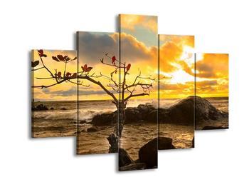 Obraz suchého stromu (F001464F150105)