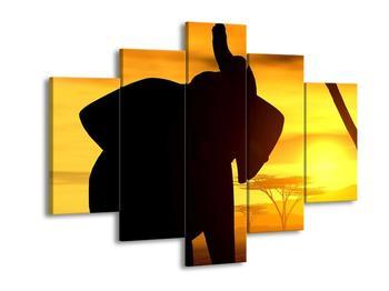 Obraz siluety slona (F001480F150105)