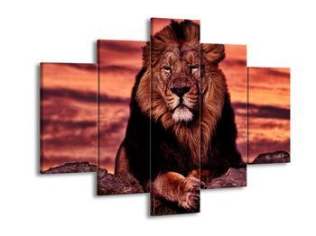 Obraz krále zvířat (F001507F150105)