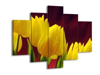 Obraz žlutých tulipánů (F001511F150105)