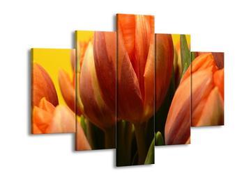 Obraz květů tulipánů (F001529F150105)