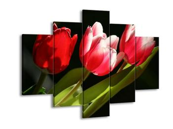 Obraz tří tulipánů (F001579F150105)