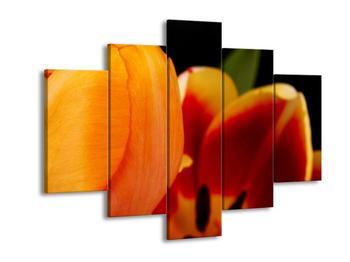 Obraz kvítků (F001589F150105)