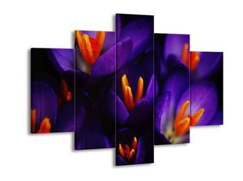 Obraz fialových květinek (F001590F150105)