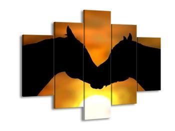 Obraz koňské lásky (F001606F150105)