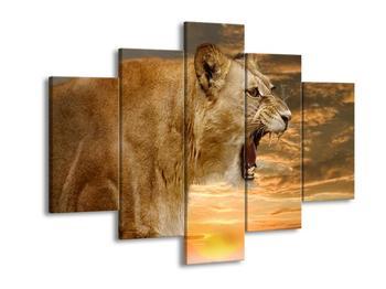 Obraz řvoucí lvice  (F001634F150105)