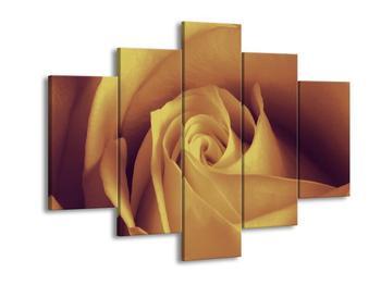 Obraz něžné růže (F001673F150105)
