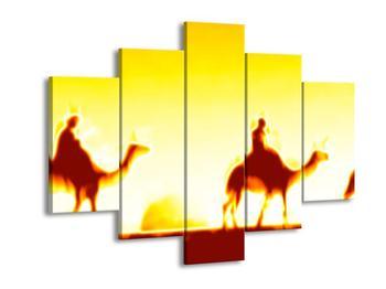 Obraz velblouda na rozplálené poušti (F001680F150105)