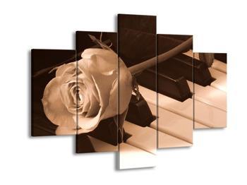 Černobílý obraz růže (F001878F150105)