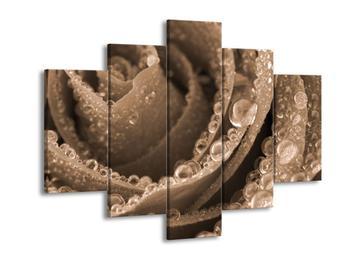 Obraz kapek vody (F001903F150105)