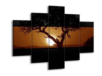Krásný obraz stromu (F001944F150105)