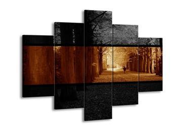 Dvoubarevný obraz podzimu (F001952F150105)