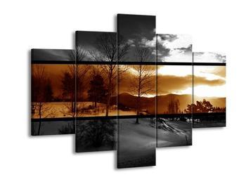 Dvoubarevný obraz přírody (F001964F150105)