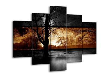 Dvoubarevný obraz přírody (F002010F150105)