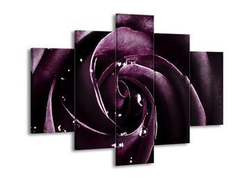 Obraz fialové růže (F002035F150105)