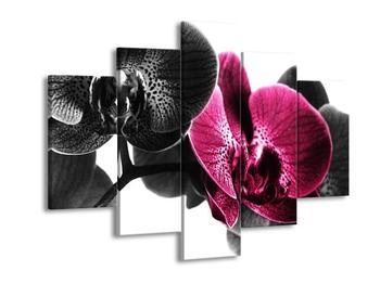 Obraz růžové orchideje (F002056F150105)