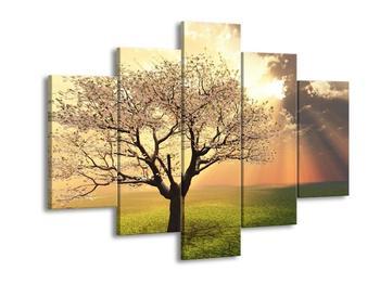 Obraz kvetoucího stromu (F002280F150105)