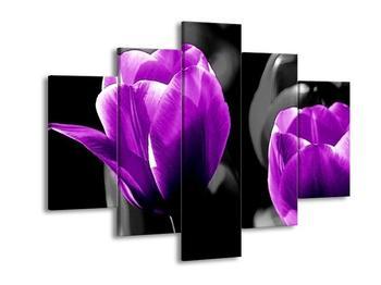 Obraz fialových květů (F002396F150105)