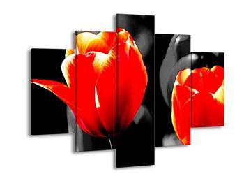 Obraz červenooranžových květů (F002397F150105)