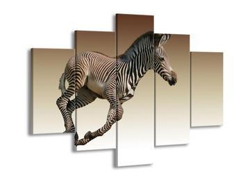 Obraz běžící zebry (F002416F150105)
